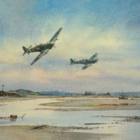 20-spitfires