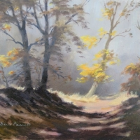 autumn-in-hogback-wood