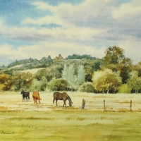 12-much-loved-horses