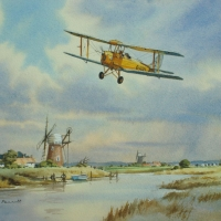 tiger-moth-over-the-broads